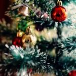 christmas-tree-1149619_960_720 (1)